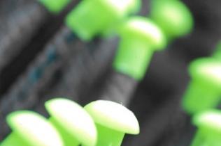 green-caps